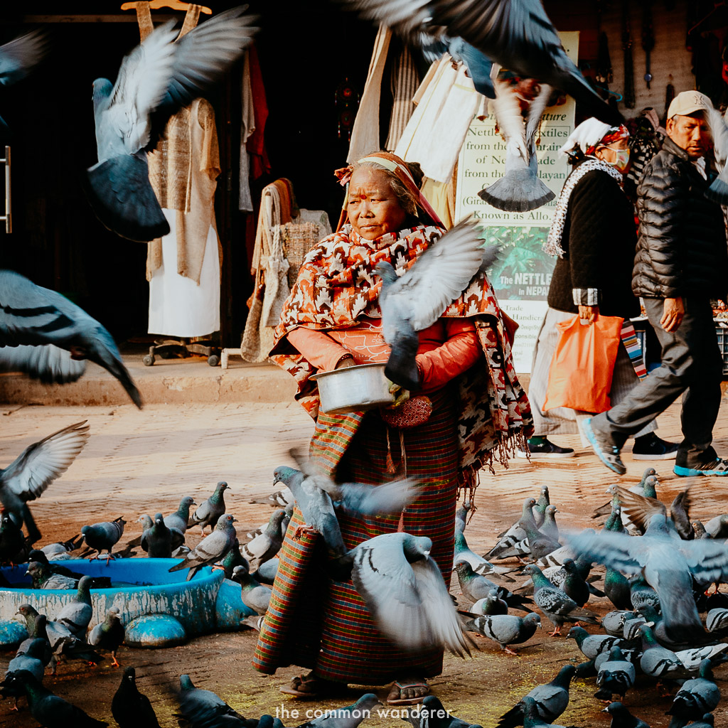 a local lady feeding birds at Boudhanath stupa