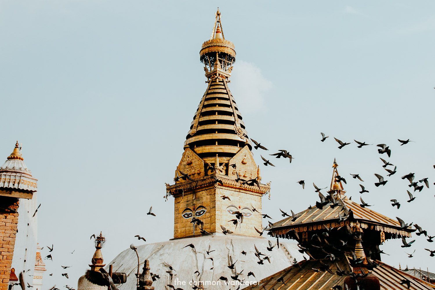 Nepal travel guide - what to see, know and do in Nepal