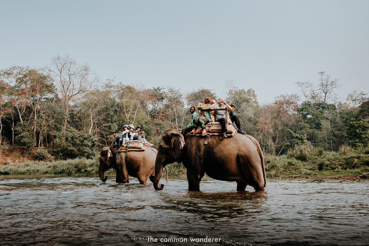 Riding elephants is a very bad practice