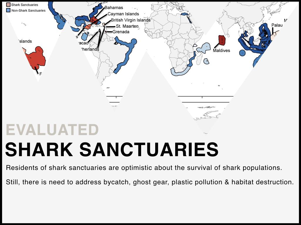 Shark_Sanctuaries.jpeg