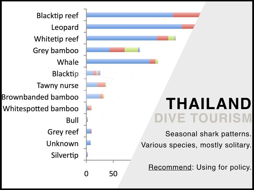 Thailand_Shark_Tourism.jpeg
