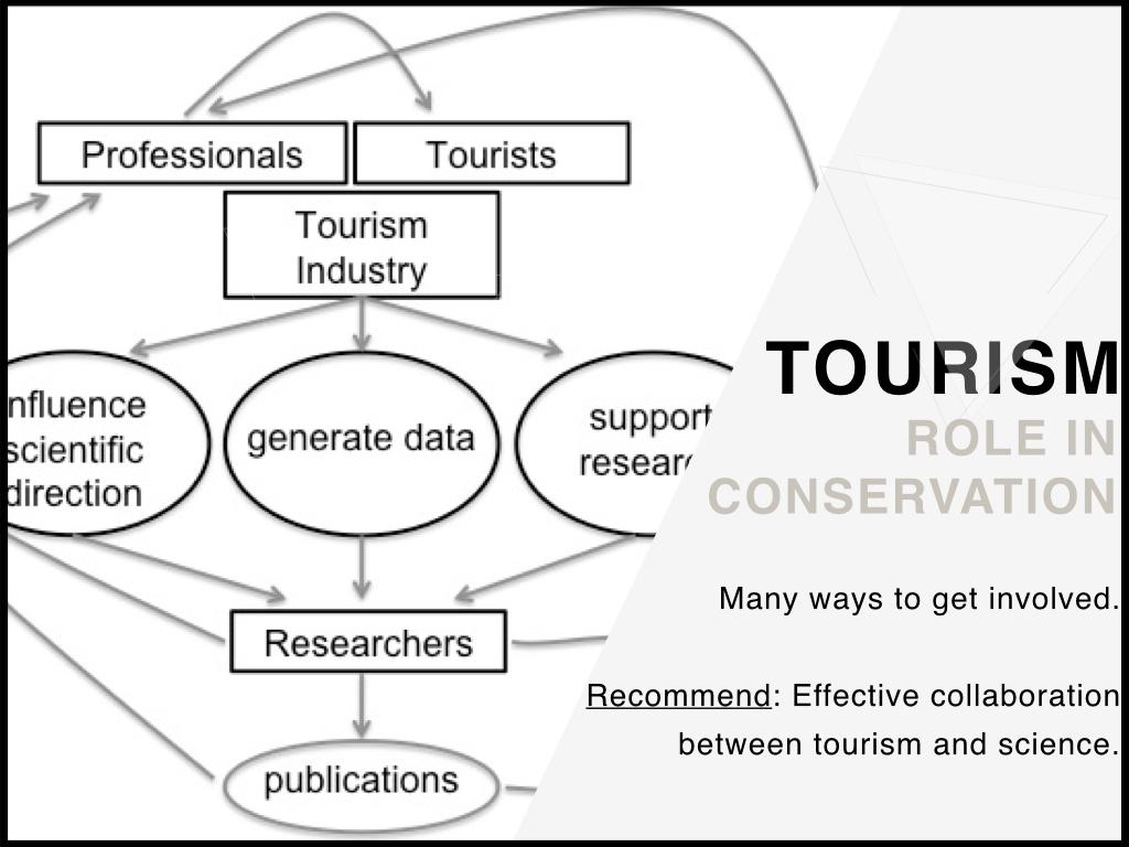 Tourism_Conservation.jpeg