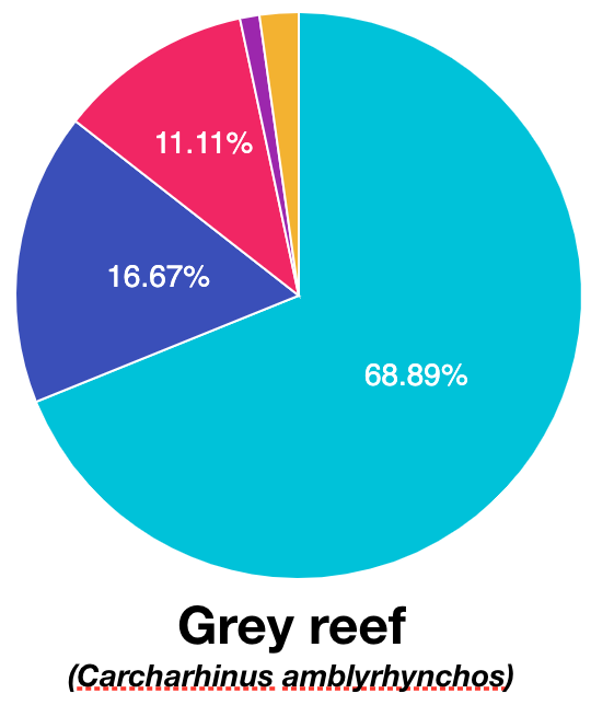 Sp_GreyReef.png