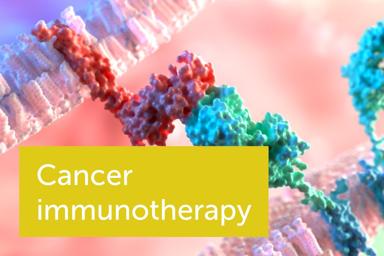 我们如何利用病人自身的免疫系统来治疗癌症?