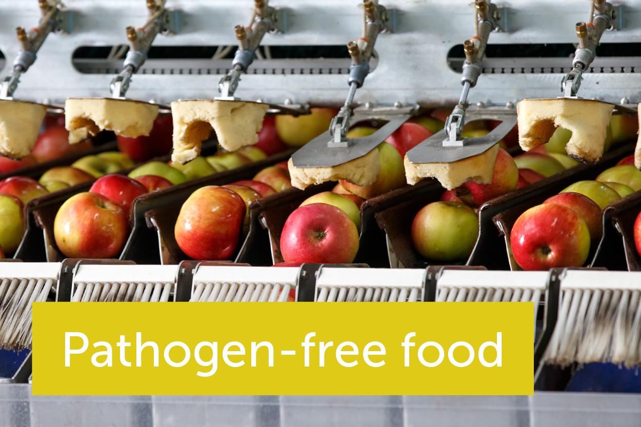 哪些创新可以帮助我们保持新鲜食品不受污染?