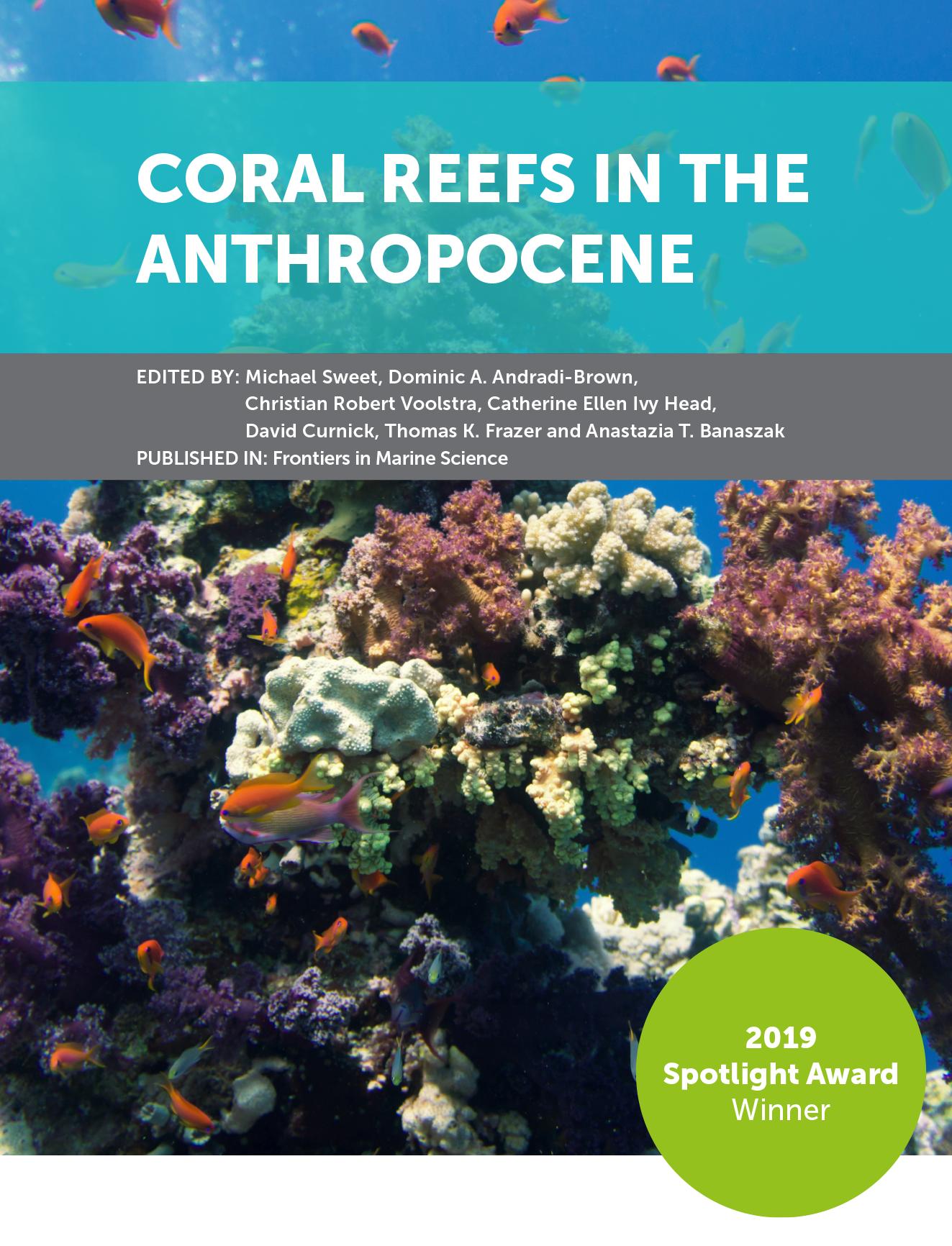 珊瑚Reefs.png