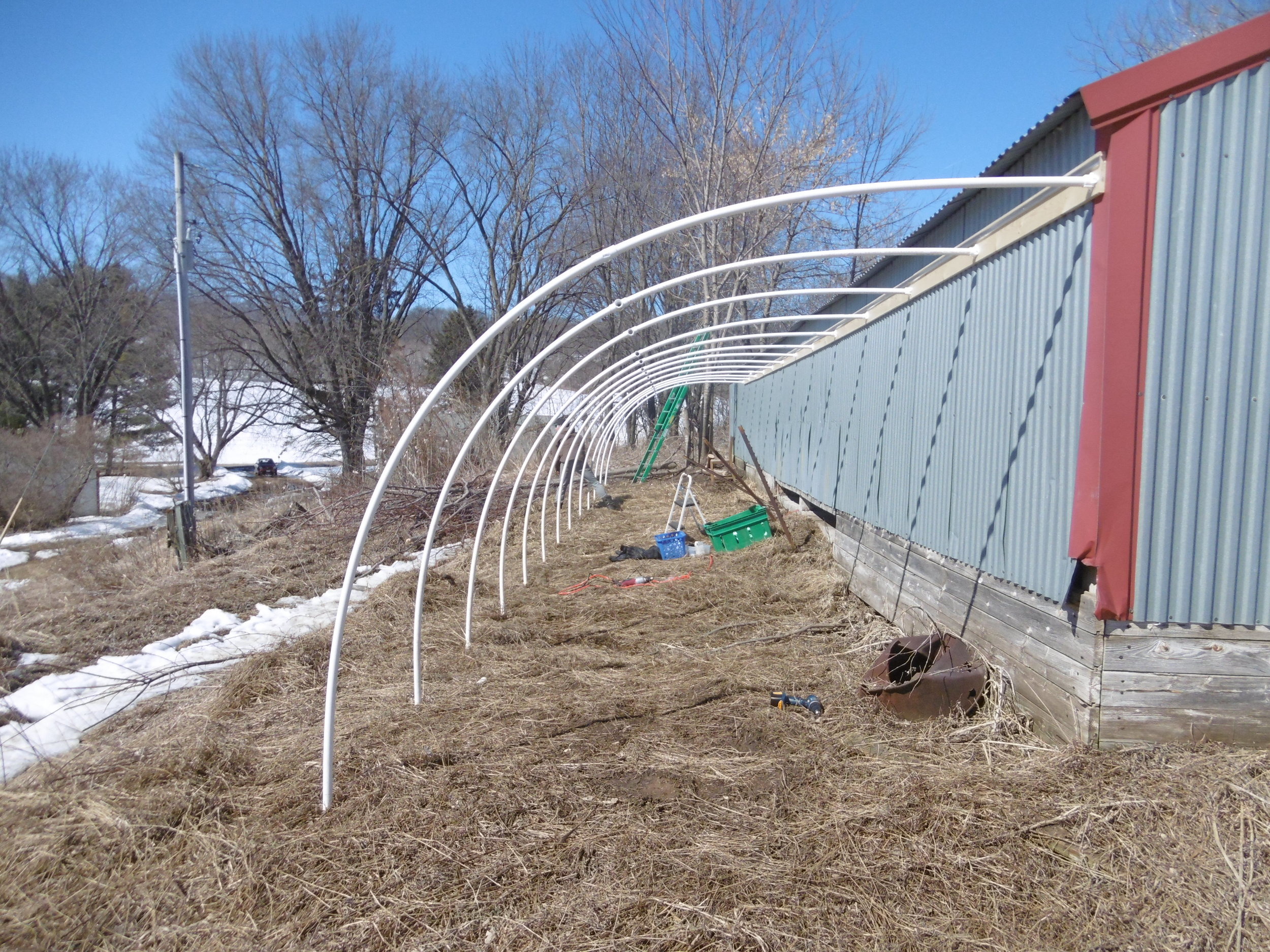 Greenhouse build, March 17