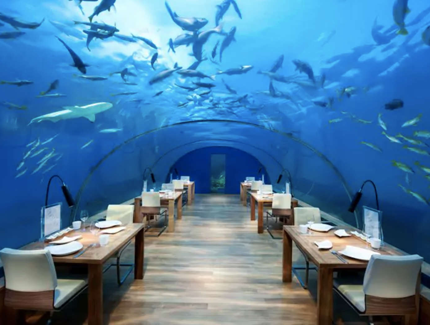 Ithaa Under Sea Restaurant at Conrad Maldives Rangali Island, Maldives