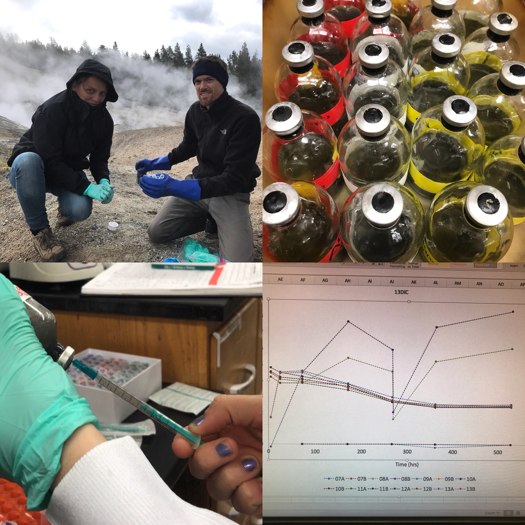 This sequence of photos captures much of our scientific process. We start with a question and then hike out to a hot spring to take a sample. Then we set up different types of enrichments in the lab, then we (Kori Klingelsmith) takes subsamples over time and measures them on an instrument, then we analyze the data and make a graph. The two duplicate samples in the graph are nicely agreeing with one another!
