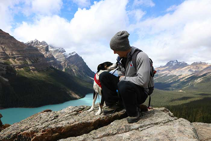 six-tips-traveling-with-your-pet.jpg