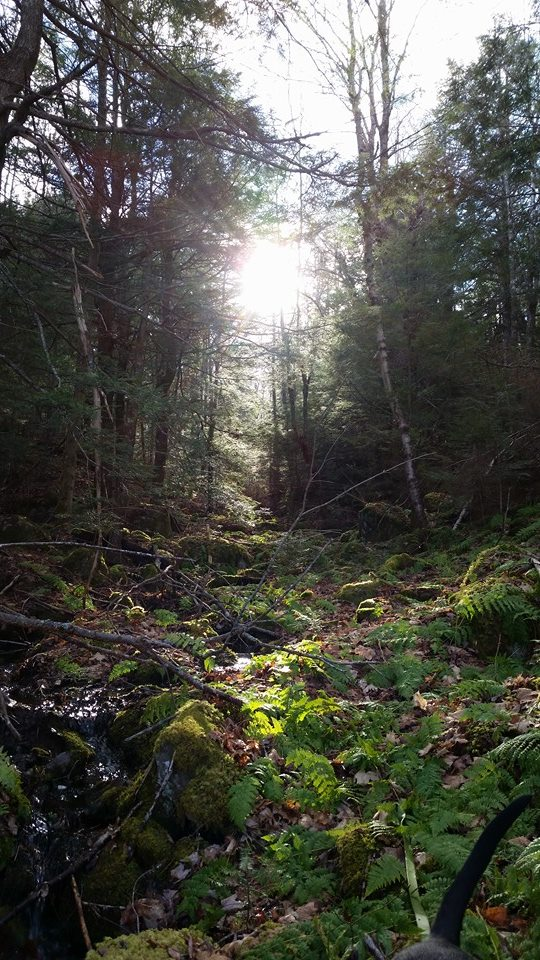 Nova Scotia - 2014