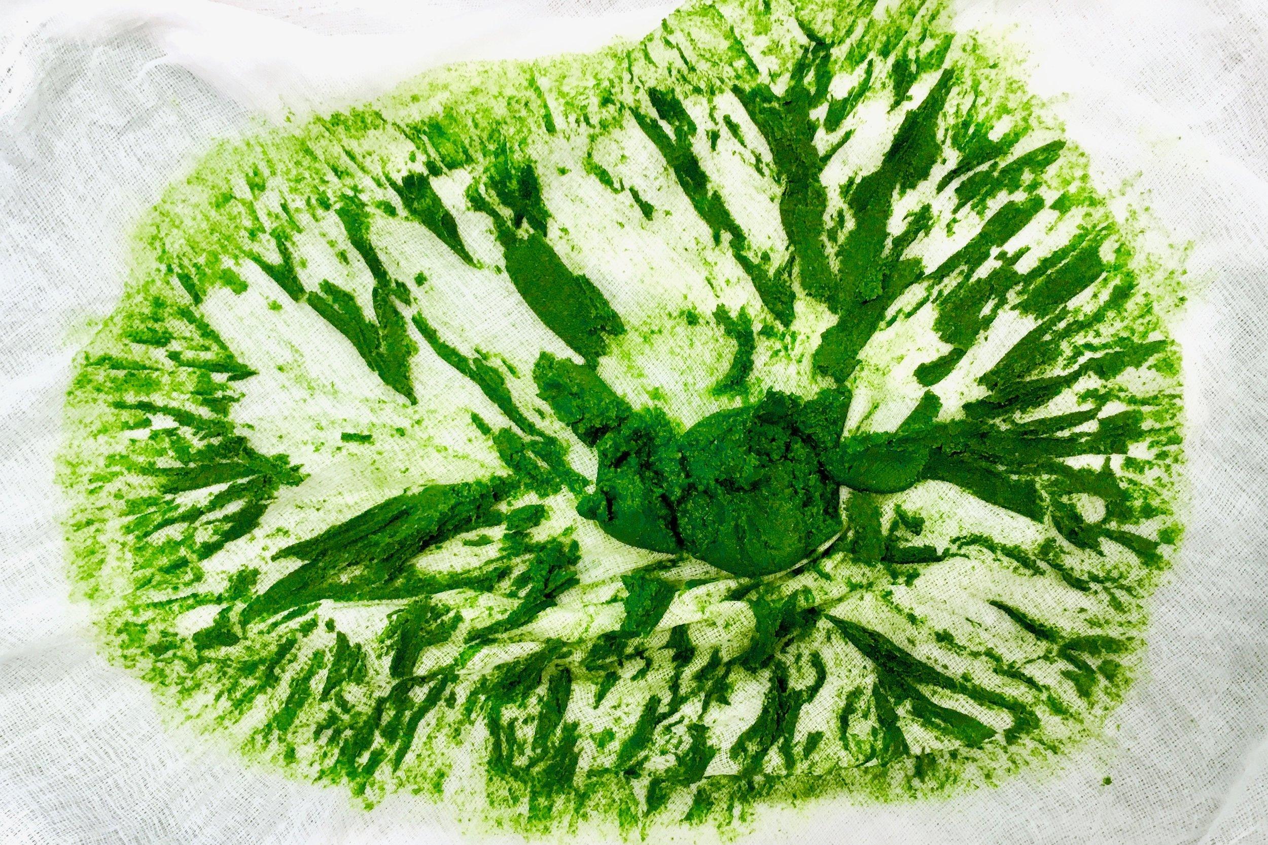 Parsley chlorophyll