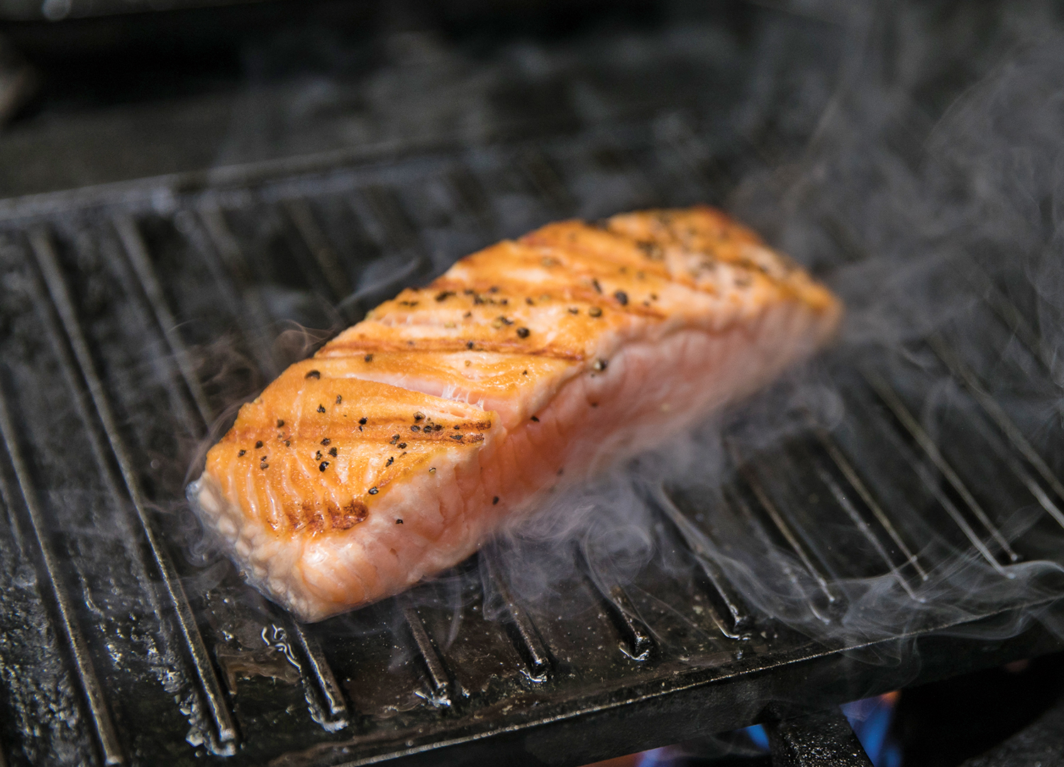 Grilled Salmon - The Sandpiper Barbados