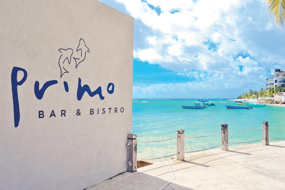 Primo Barbados