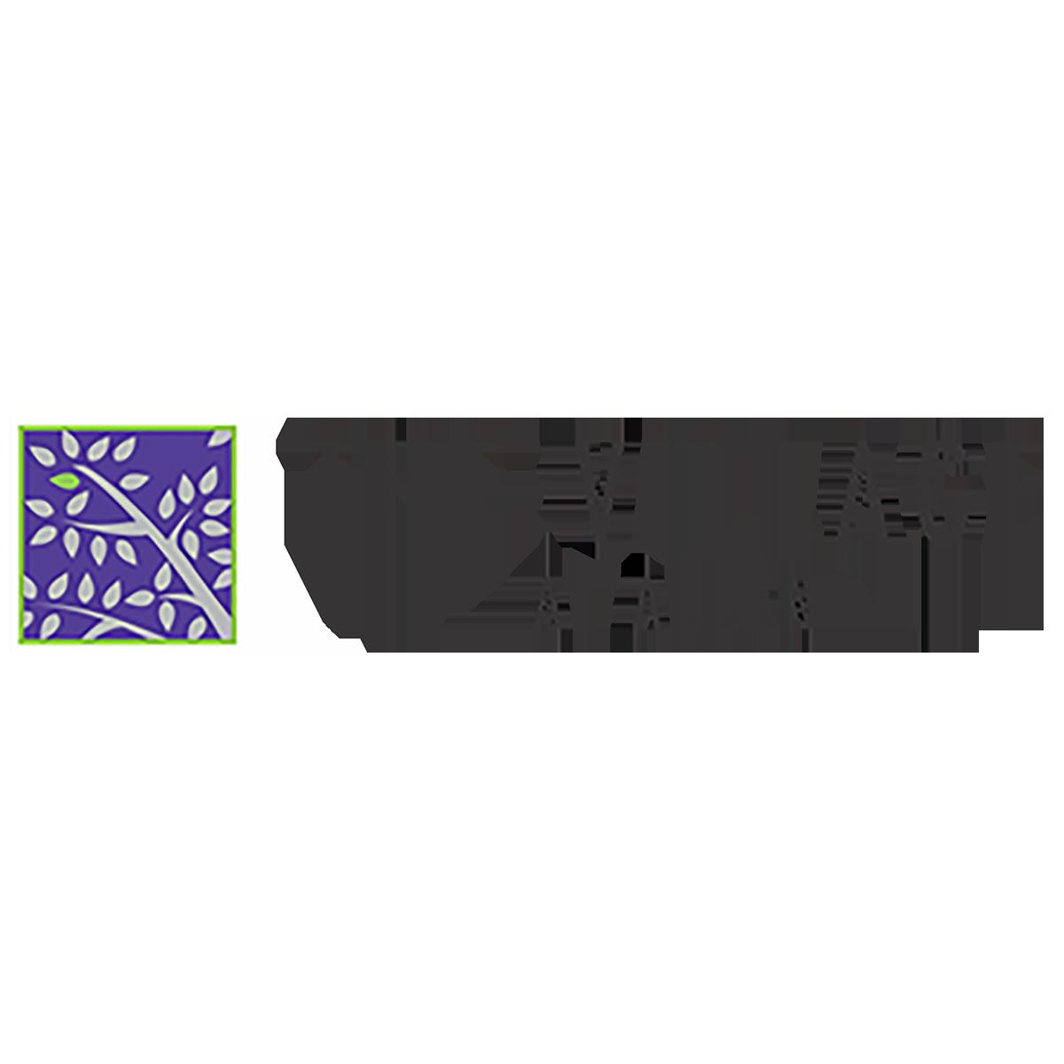 SQ-the-village-allen.png