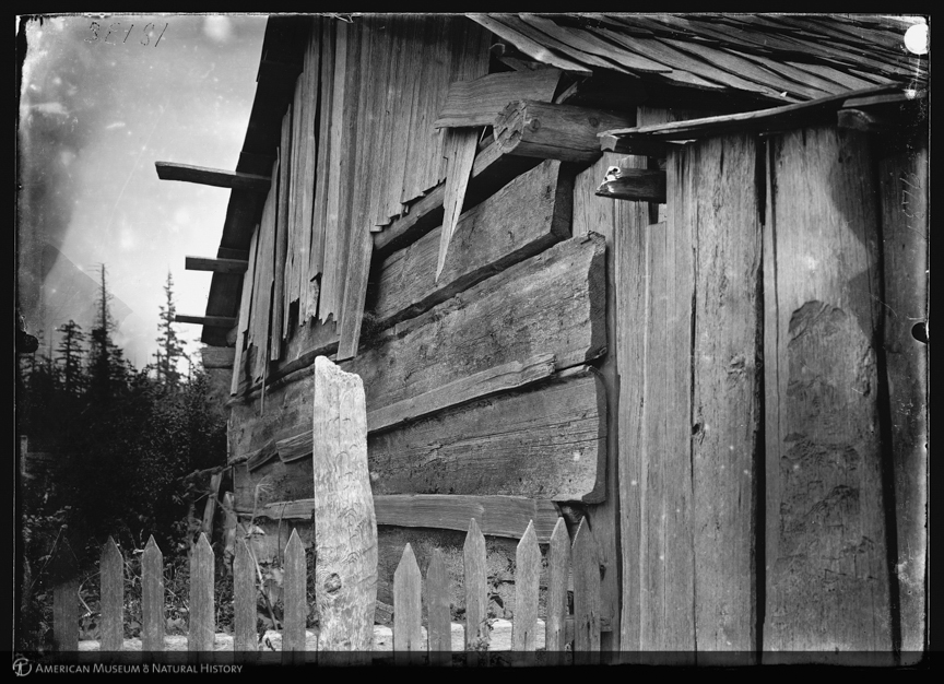 """""""Roof planks on a wall, Lummi Reservation, 1899,"""" ID: 12132.Courtesy of American Museum of Natural History Library http://images.library.amnh.org"""