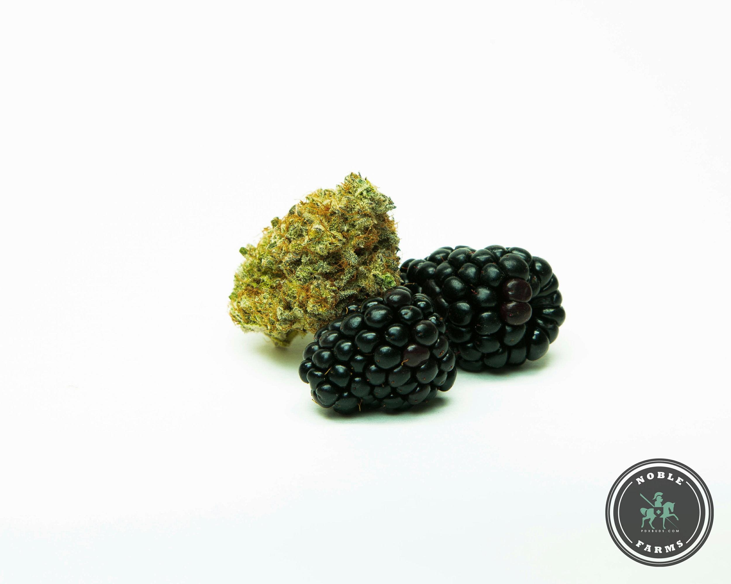 Blackberry 1 Watermarks-.jpg