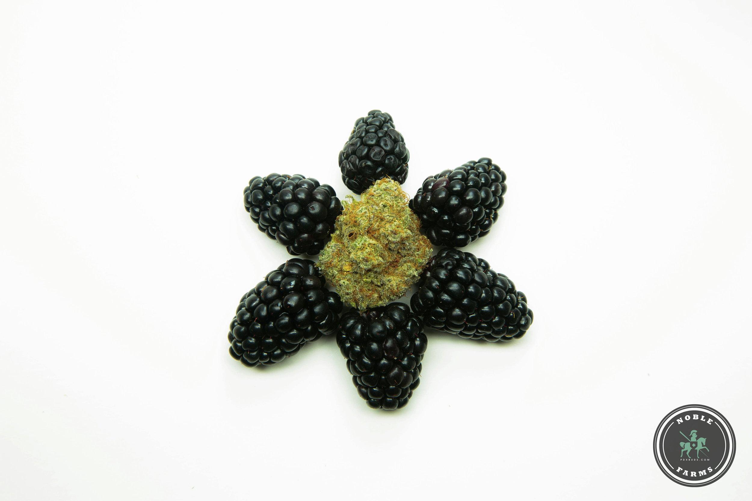 Blackberry 3 Watermark-.jpg