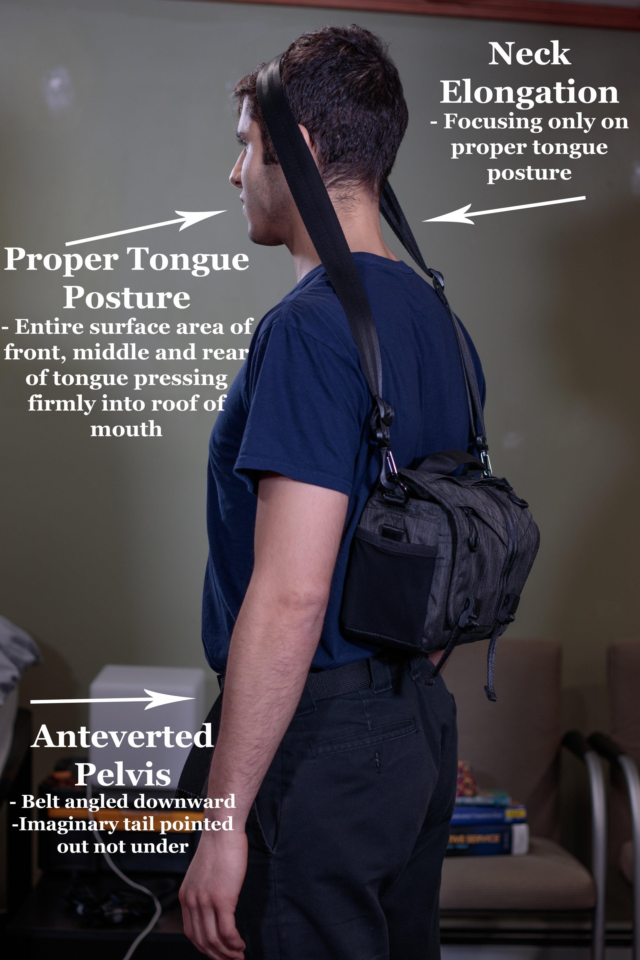 Proper Tongue Posture Rear.jpg