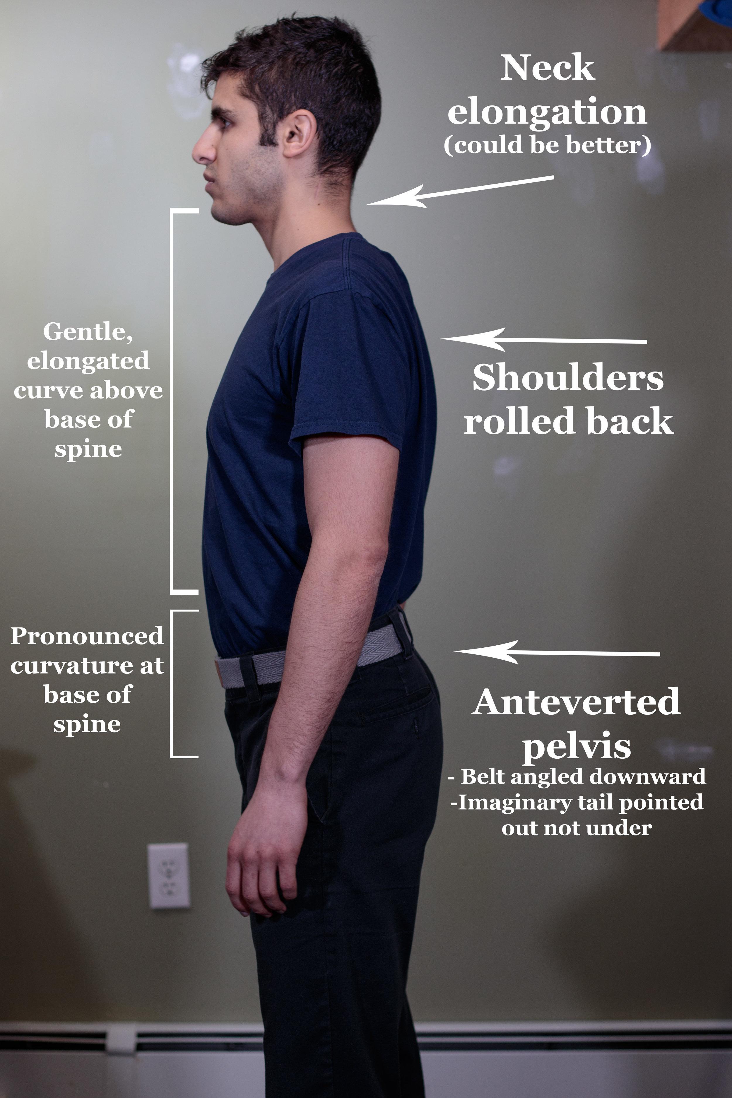 Primal Posture Side View