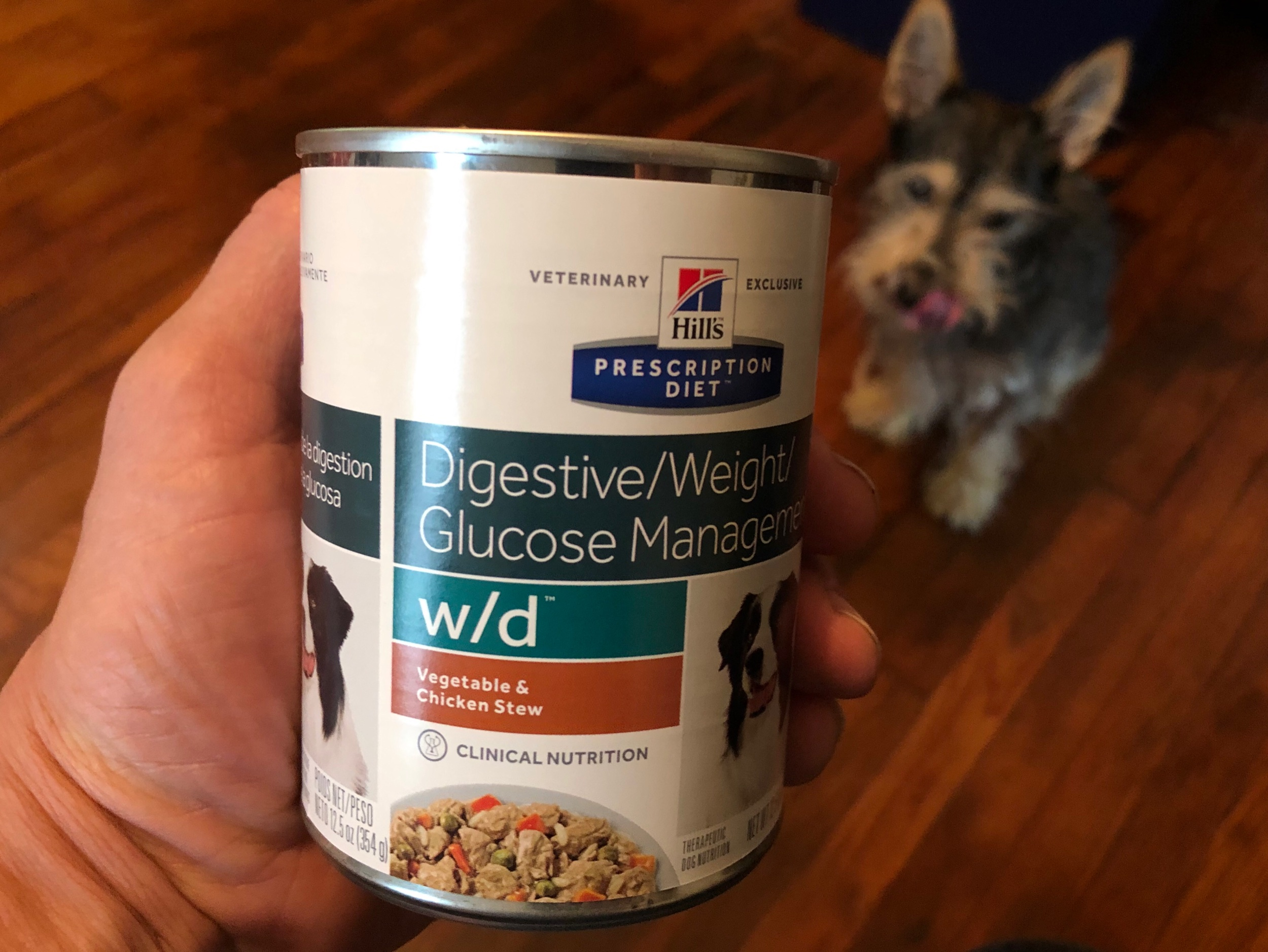 Have to ease Milo back to his regular dry food, this will help in giving him his medicne.