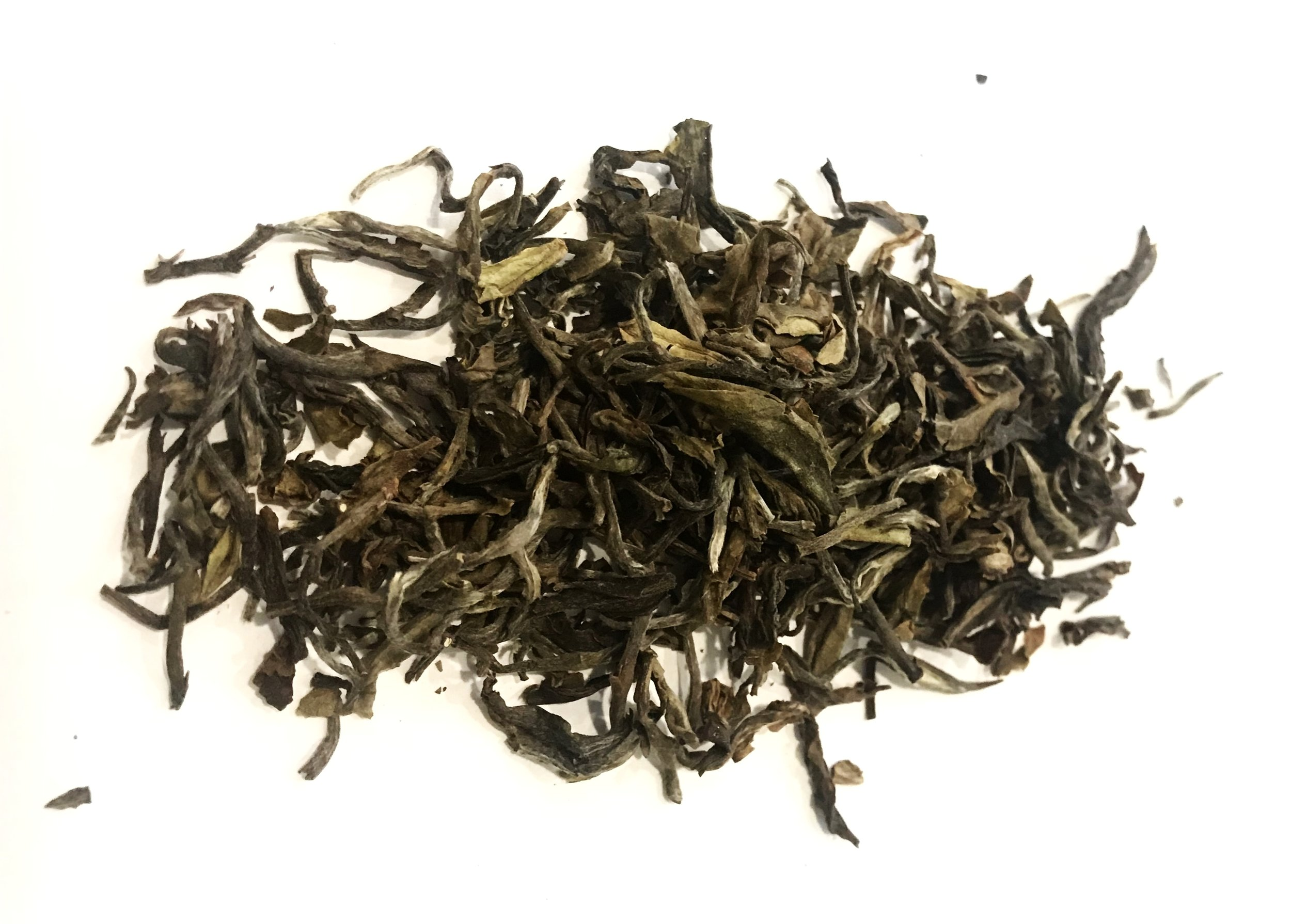 WILD TEA TREE BLACK TEA