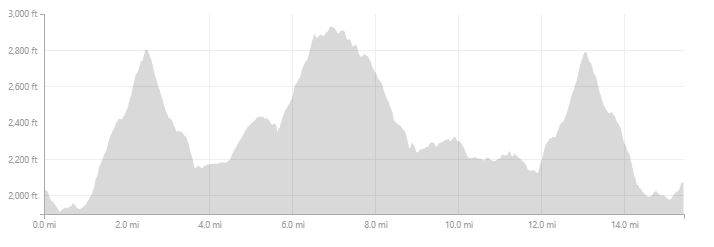 25K COURSE ELEVATION PROFILE - 2900' OF GAIN AND LOSS.