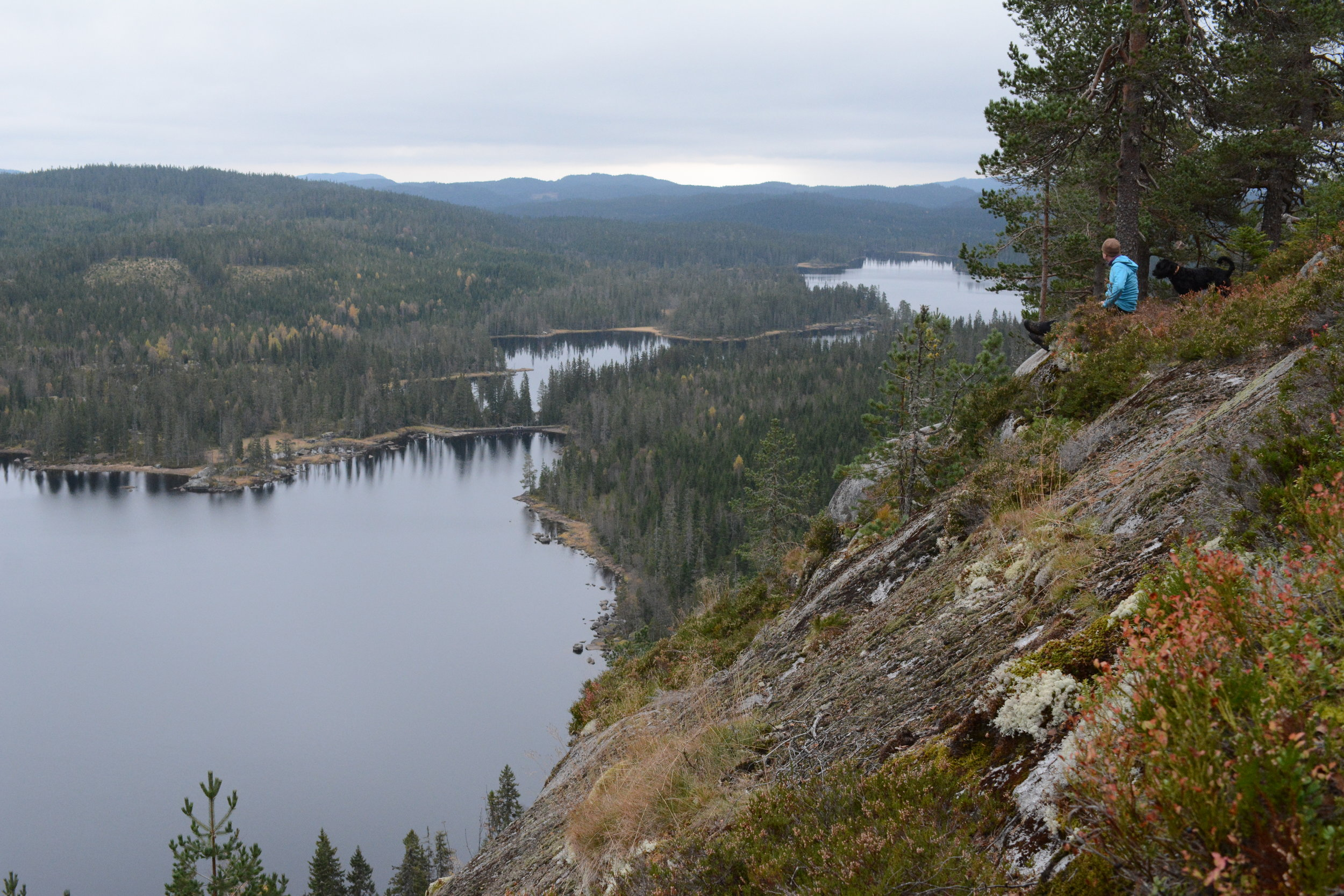 View from  Pershusfjellet  in the North of Nordmarka. (Photo: Oslo Outdoor)