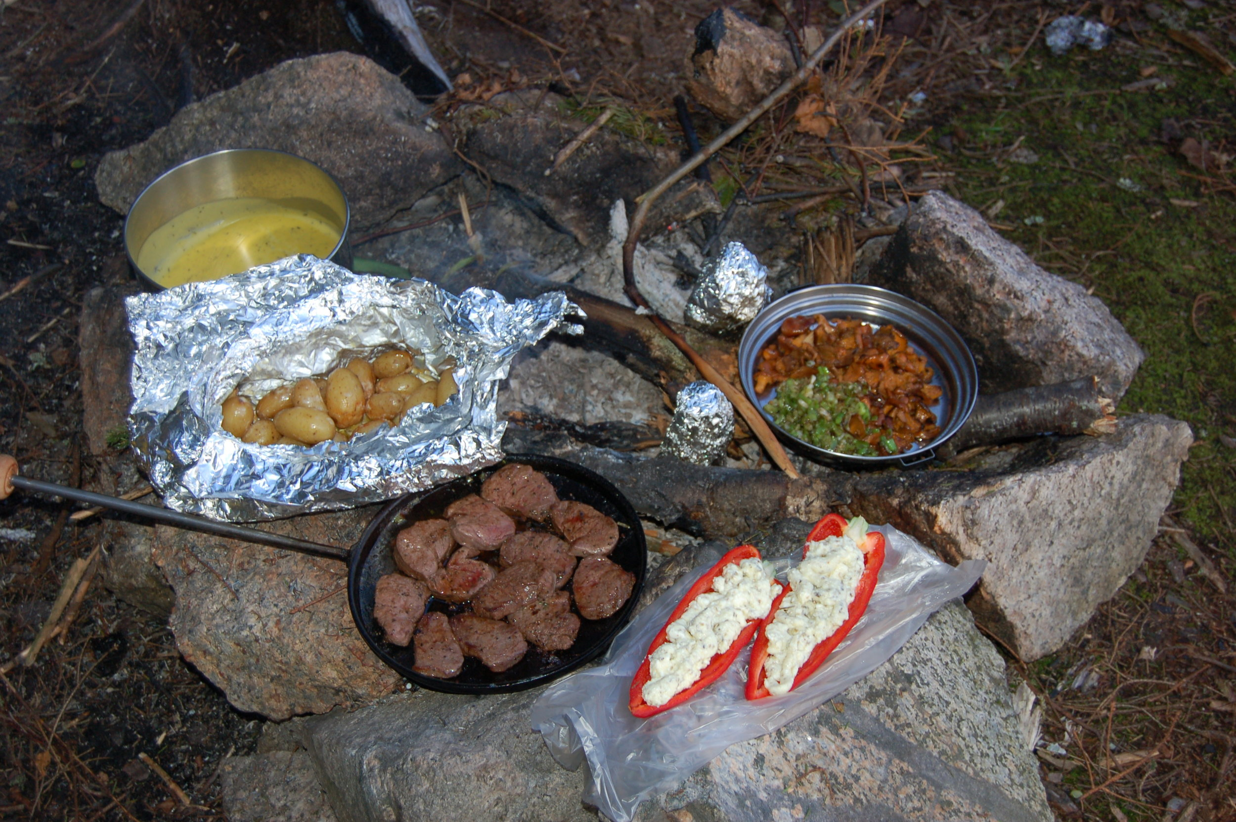Proper food after a long day of paddling. Elk-beef and local mushrooms (Photo: Oslo Outdoor)