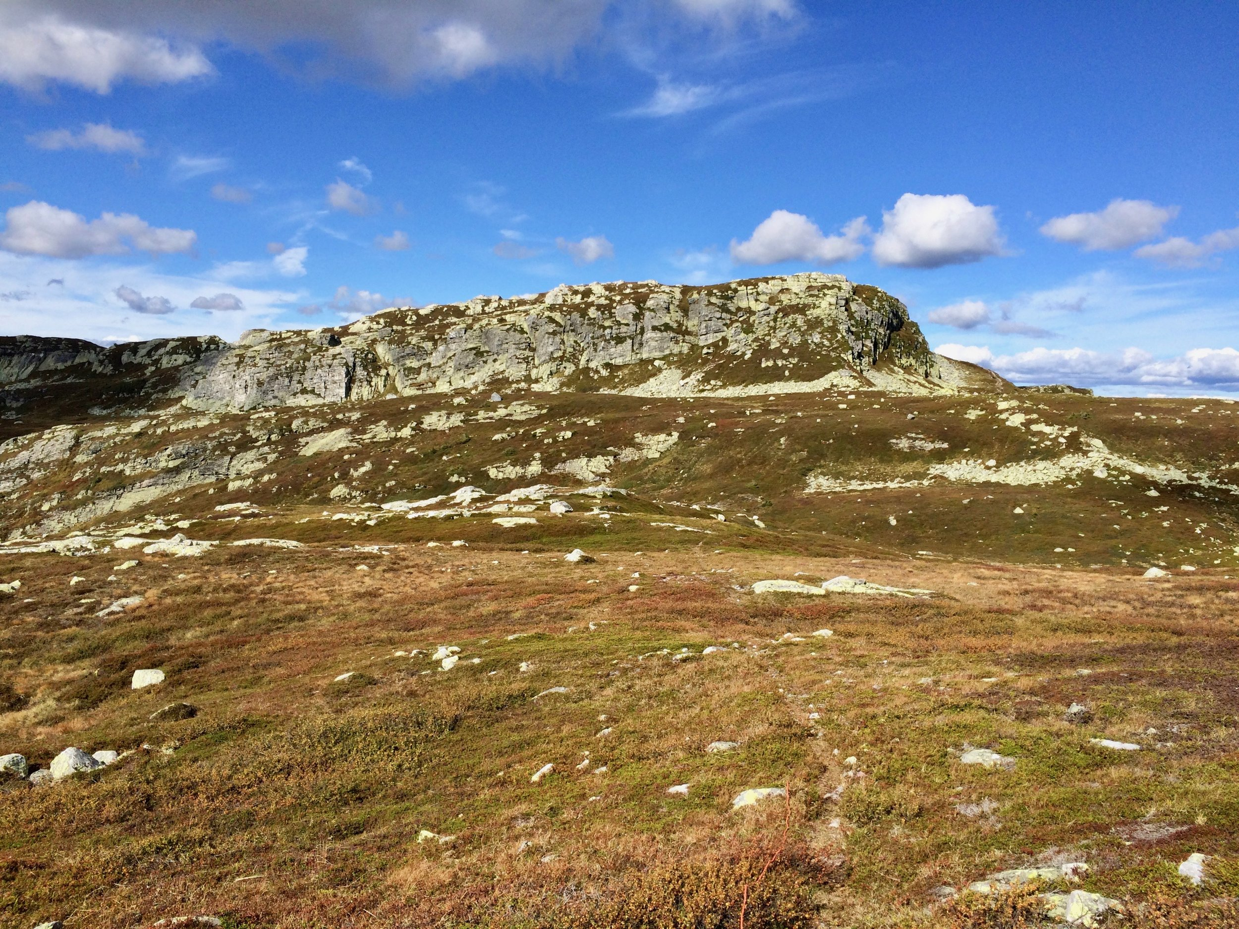 A section from the Lifjell mountain area in Telemark. Photo: Oslo Outdoor
