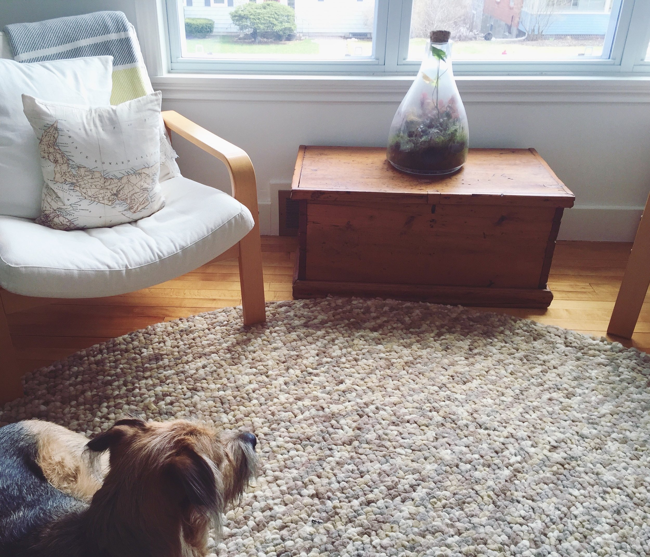 Maia LaPierre Living Room