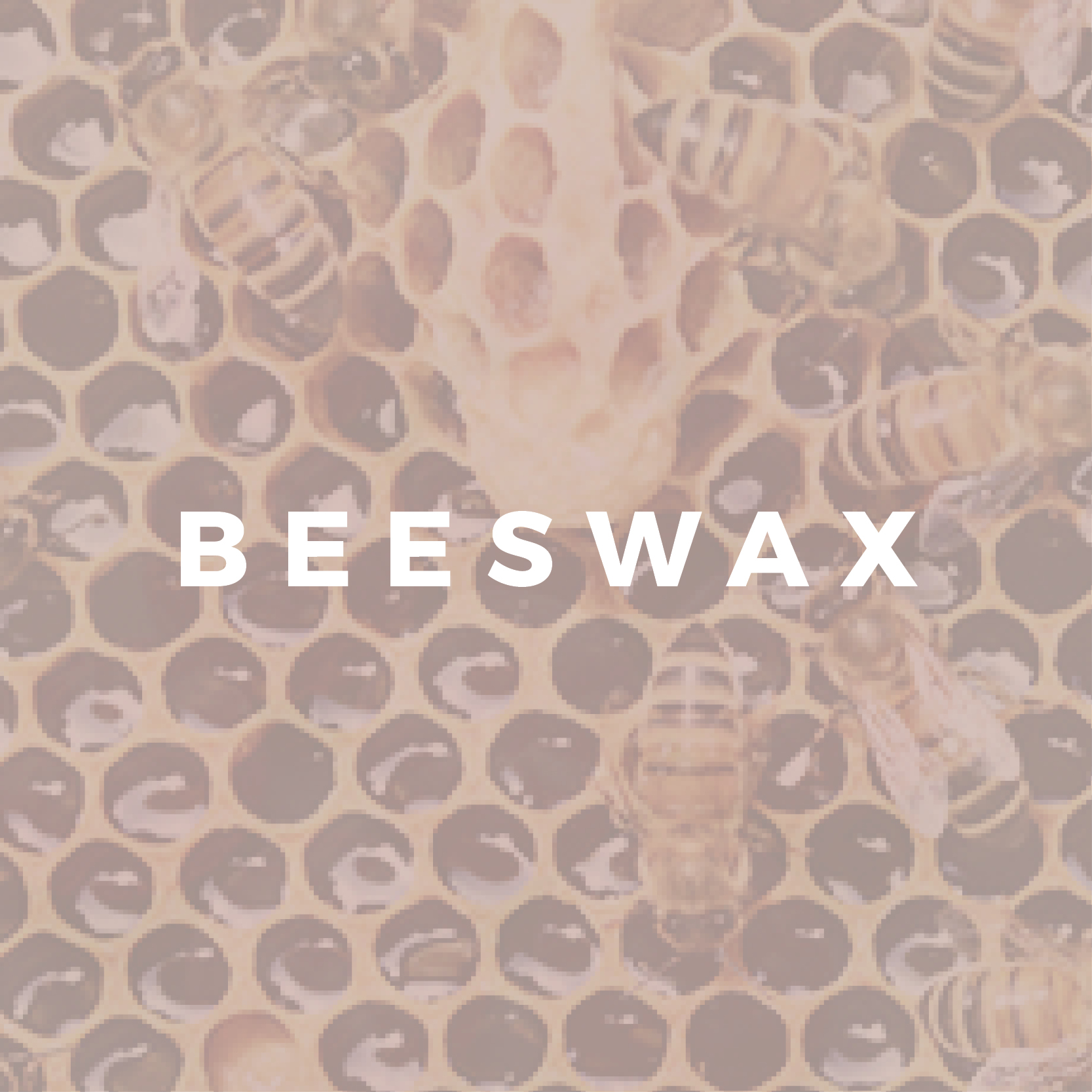 Make your own reusable Beeswax food wrap
