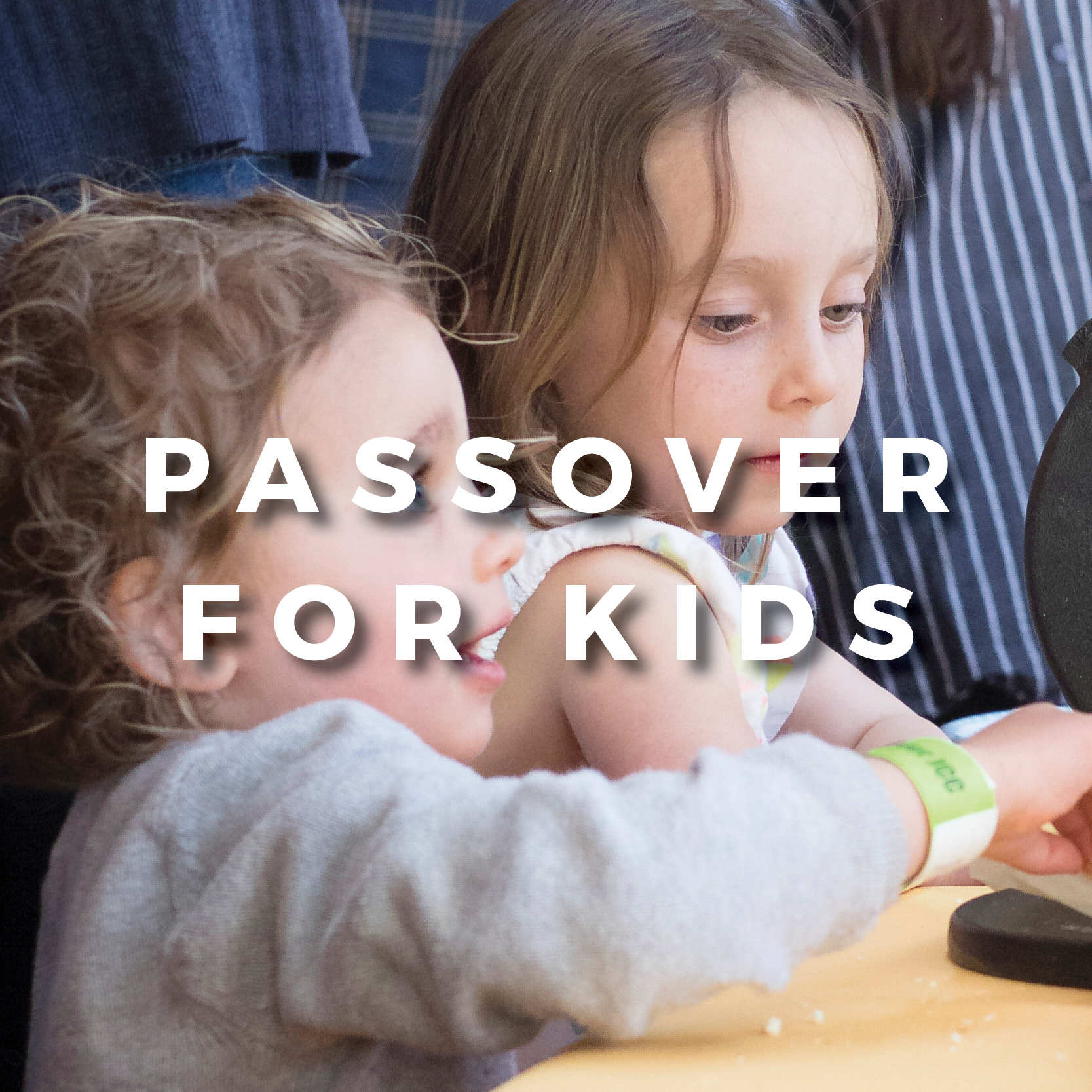 PASSOVER ON  THE FARM