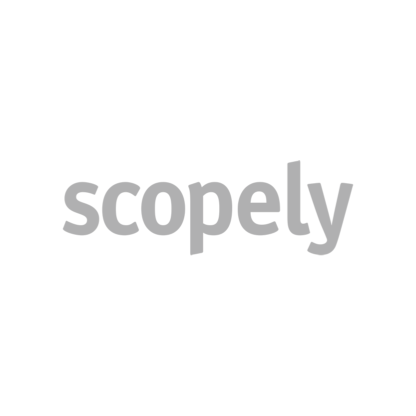 Evolution_Scopely.png