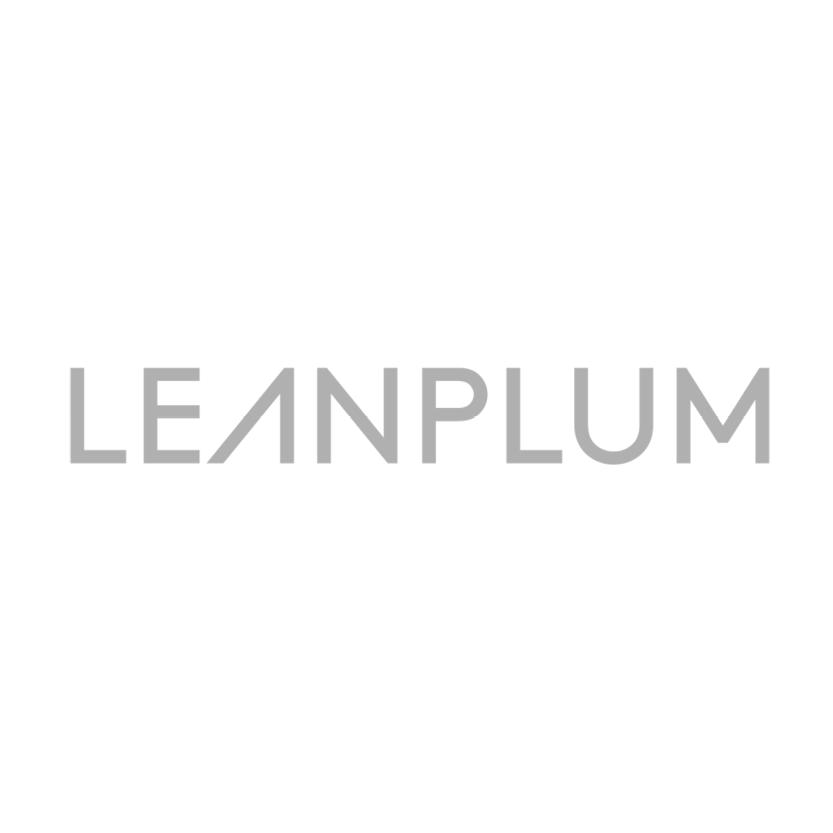 Evolution_Leanplum.png
