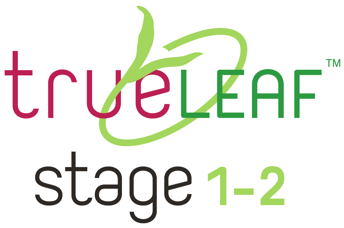 TRUE LEAF STAGE GRAPHICS-05.png
