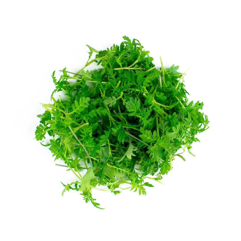 Marigold Microgreen