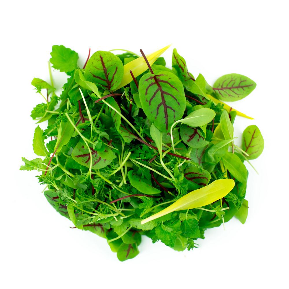 Sorrel Blend Microgreens