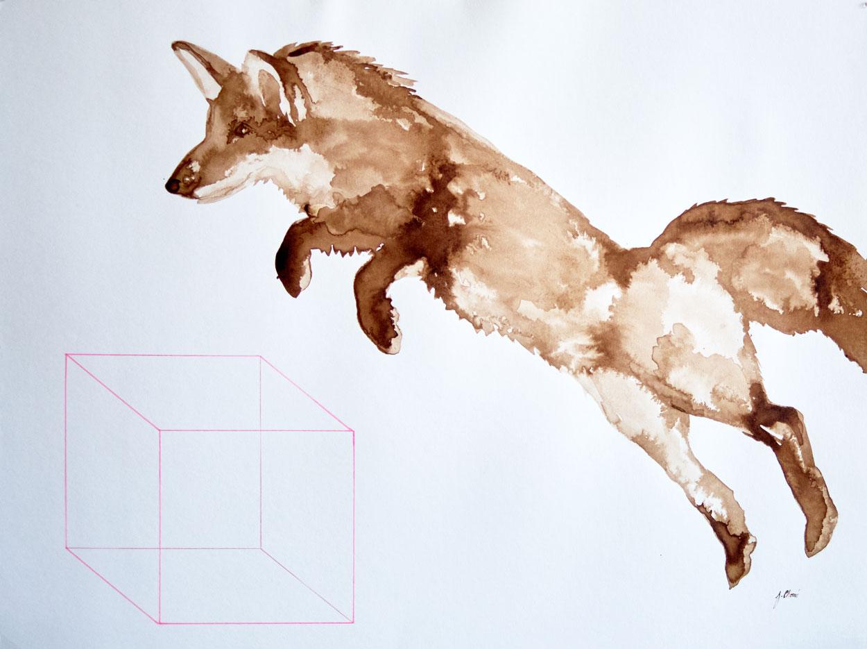 Fox-in the box