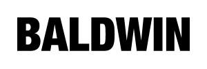 Baldwin-Denim-Logo-Rectangle-300x100.jpg