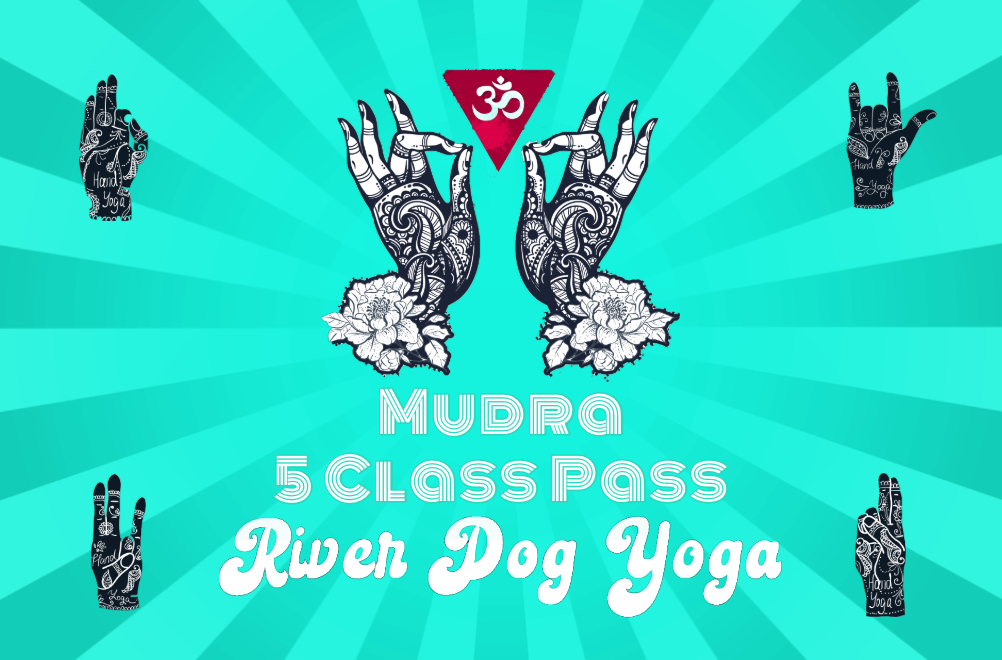 Mudra 5 Class Pass @ $55 - that's like totally getting a free beer!