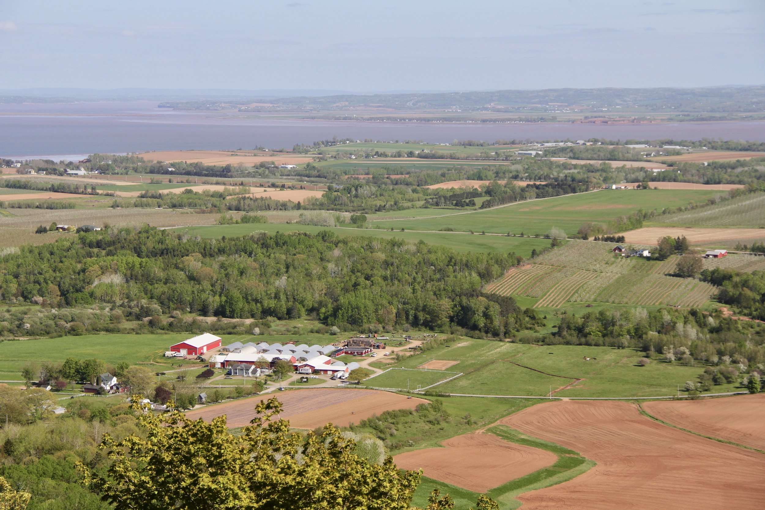 The Annapolis Valley as seen from the Lookoff on the North Mountain