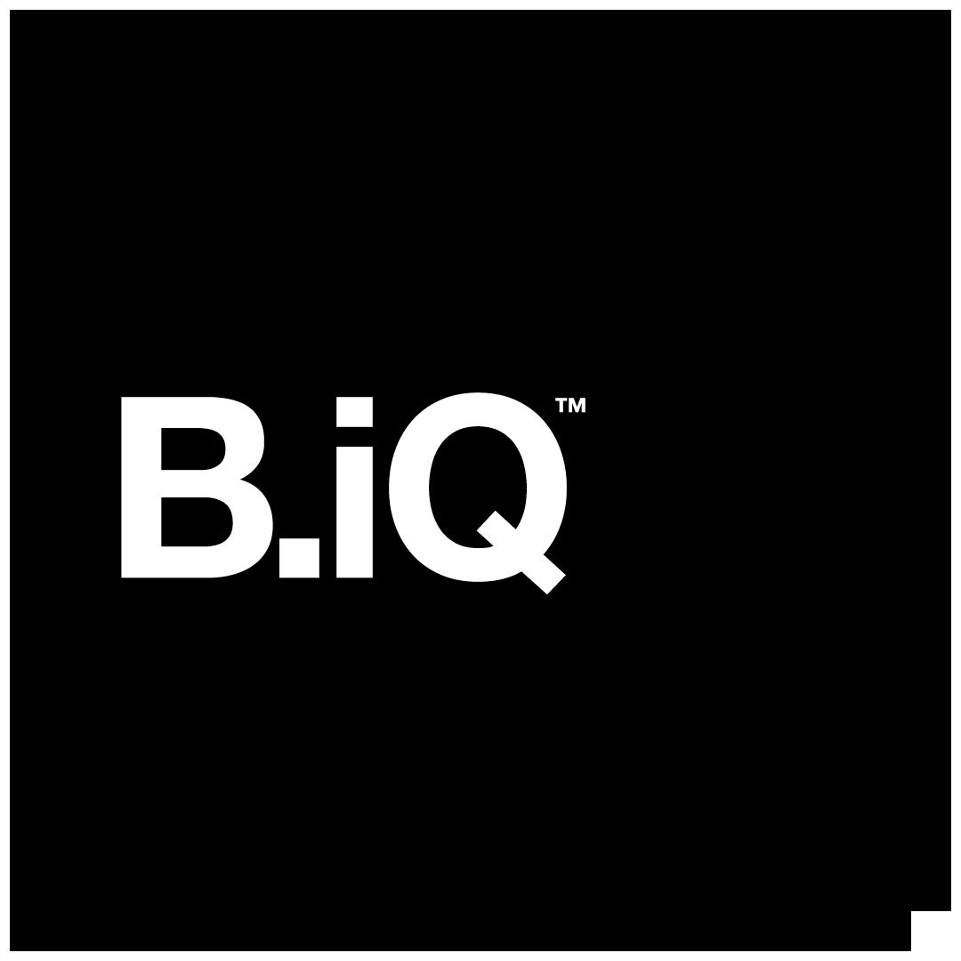 BiQ_Logo.png
