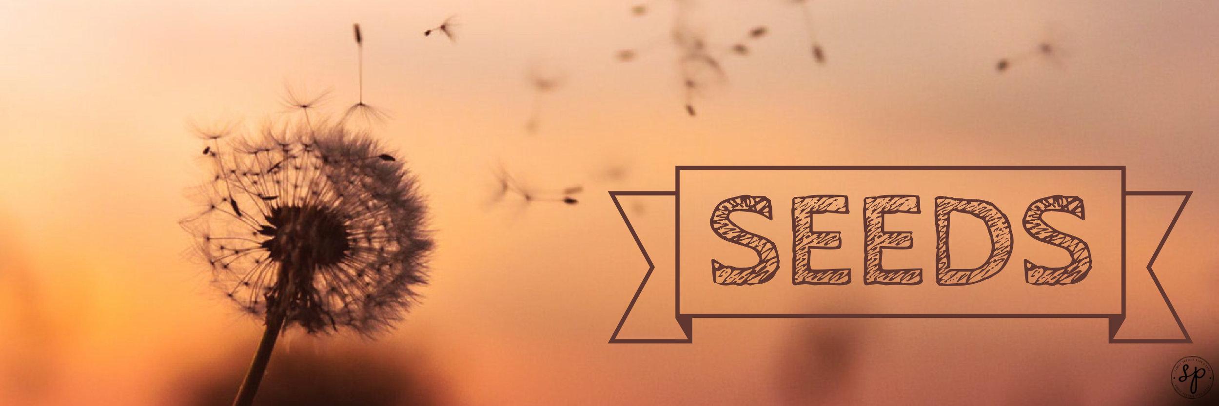 Adobe Spark-28.jpg