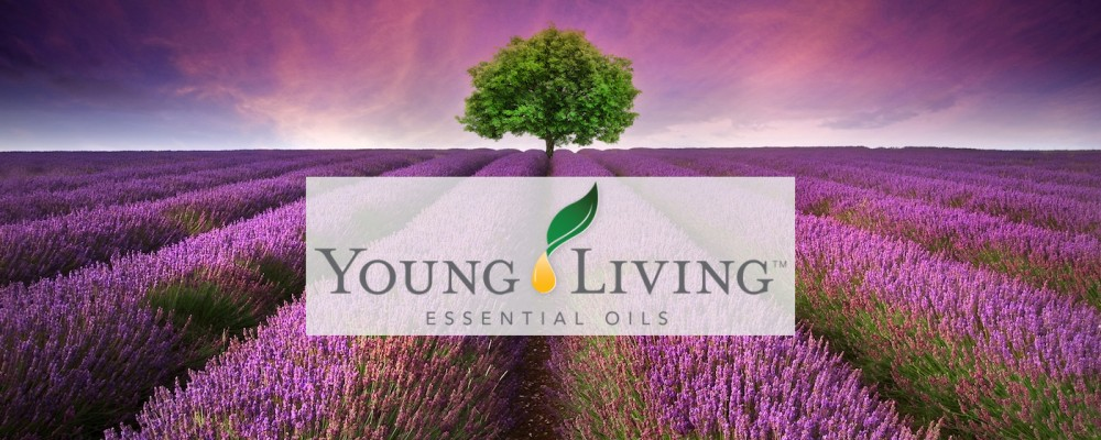young-living-lavender-field-with-logo-1400-x-700-1000x400.jpg