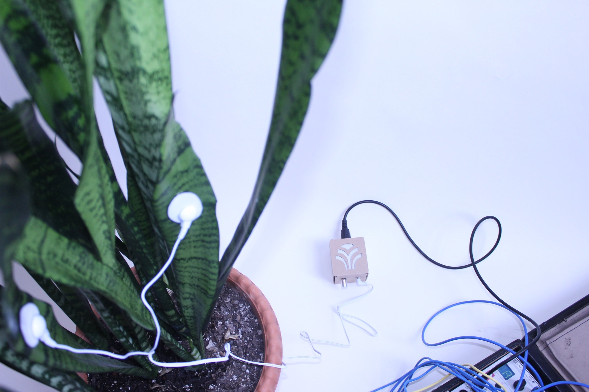 PlantWave: Plant Generated Music