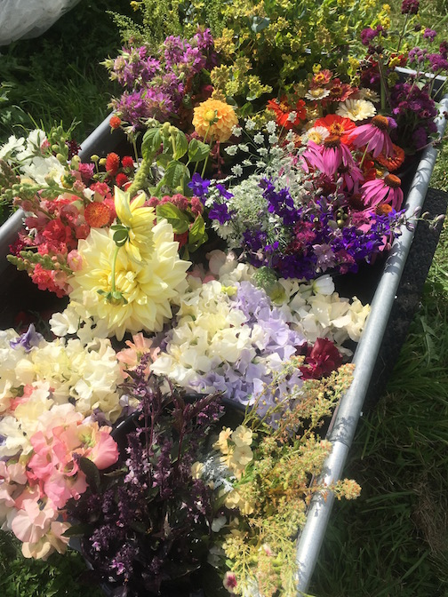 A cartload of flowers going to florists & store bouquets