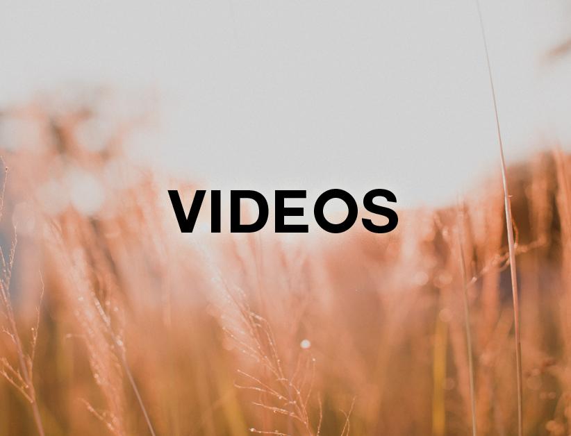 RefugeWeb_Button_Videos.jpg
