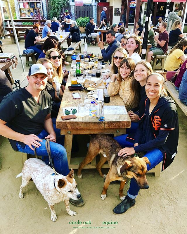 A fun evening out to celebrate our growing team, a birthday and summer. • • • • • #circleoakequine #vetlife #vettechlife #weloveourjob #equinesportsmedicine #equinerehabilitation #horsevet