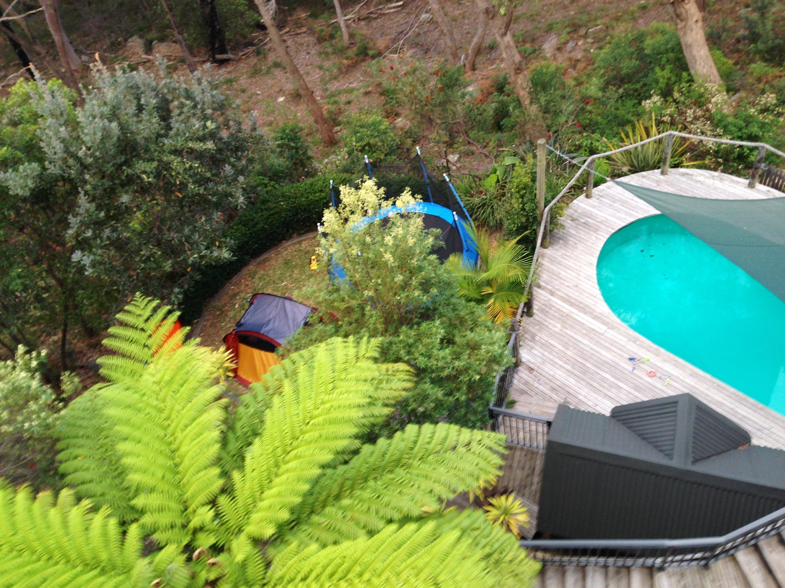 Pool and lush gardens